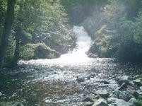 Slike prirode - Šume, planine i more - Kompilacija 1 - slika 2