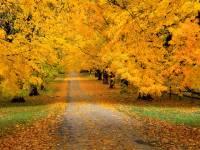 Jesenja ravnodnevica