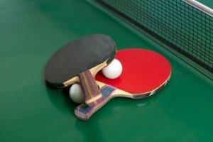 Stoni tenis (Стони тенис)