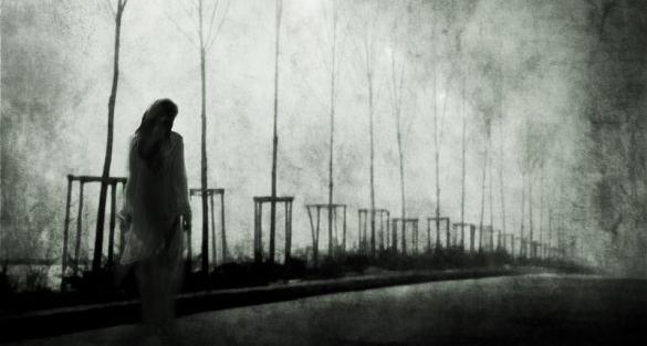 Šutnja - Jelena Dodić