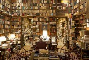 O biblioteci