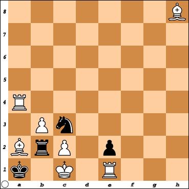 Šahovski problem br. 17