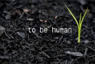 Humana strana sporta - Video koji će Vas ostaviti bez daha