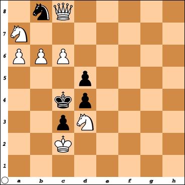Šahovski problem br. 20
