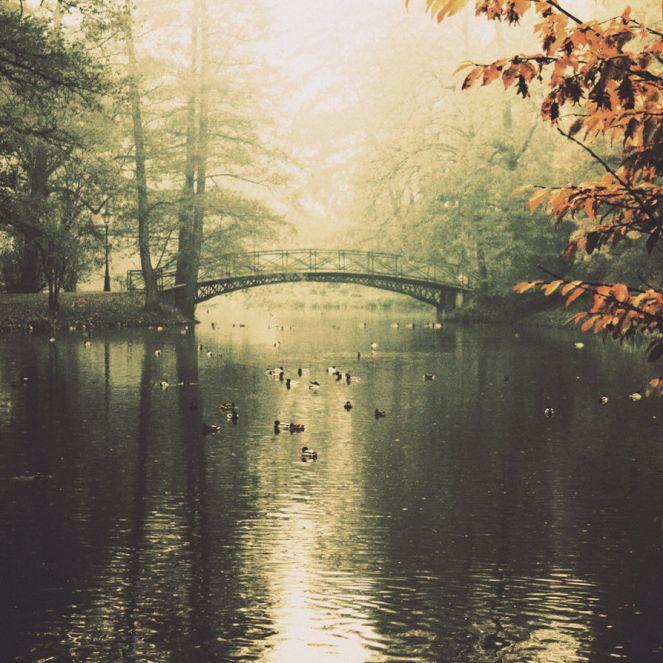 Pod starim mostom - Mika Antić