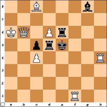 Šahovski problem br. 23