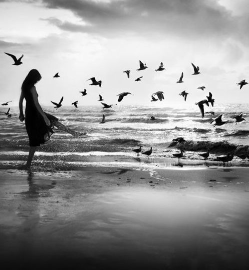 Tako tuguje vetar - Herman Hese