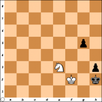 Šahovski problem br. 25