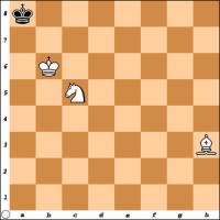 Šahovski problem br. 26