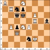 Šahovski problem br. 28