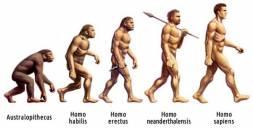 Evolucija čoveka