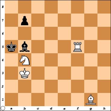 Šahovski problem br. 31