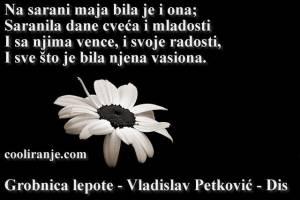 Grobnica lepote - Vladislav Petković - Dis