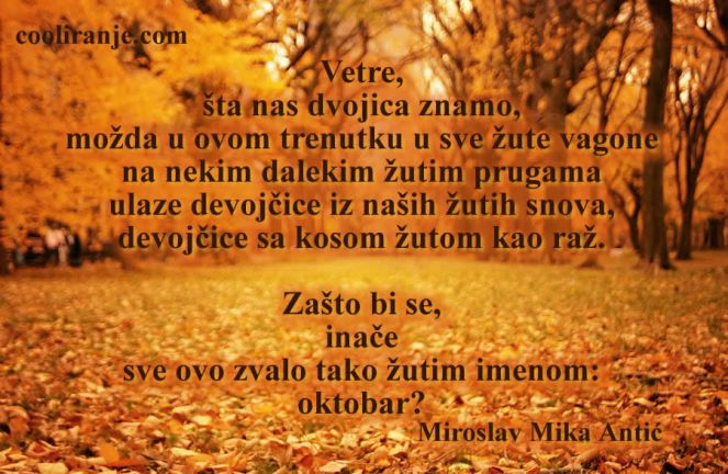 Najbudalastija tuga među tugama - Miroslav Mika Antić